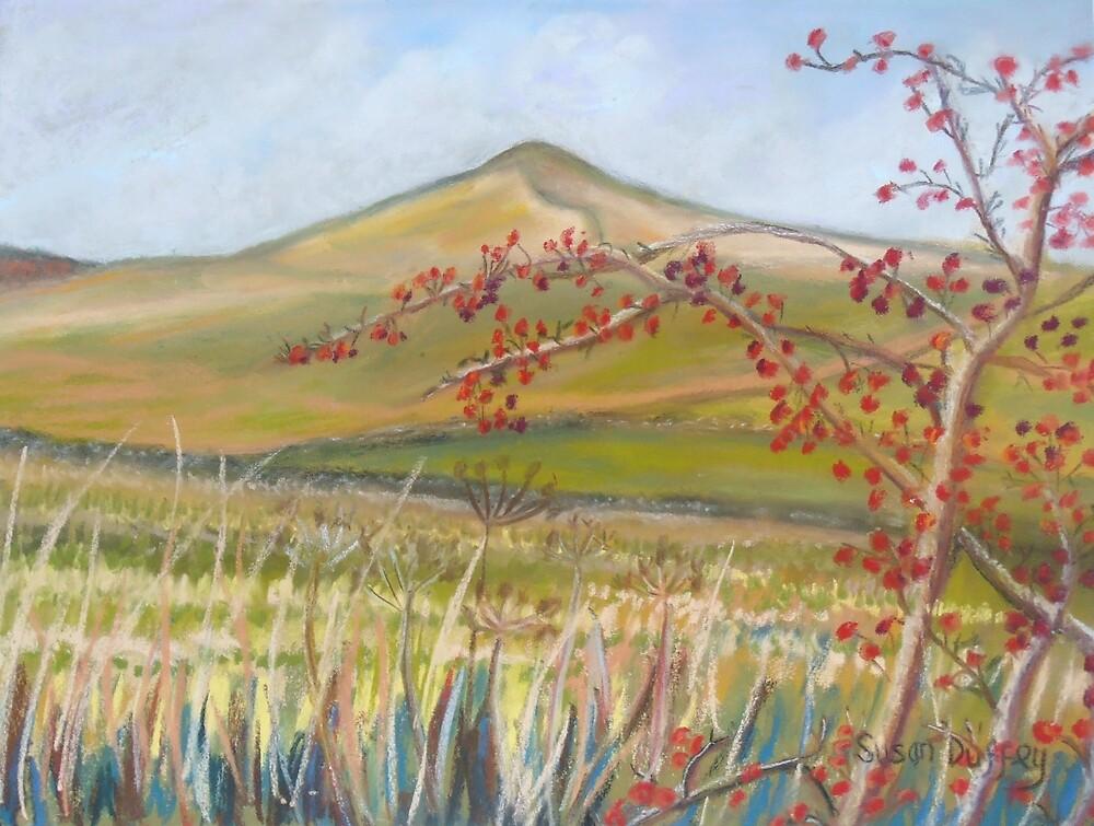 Sharphaw by Susan Scott