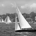 Sailboats Heading Out. by Mary-Anne Ganley