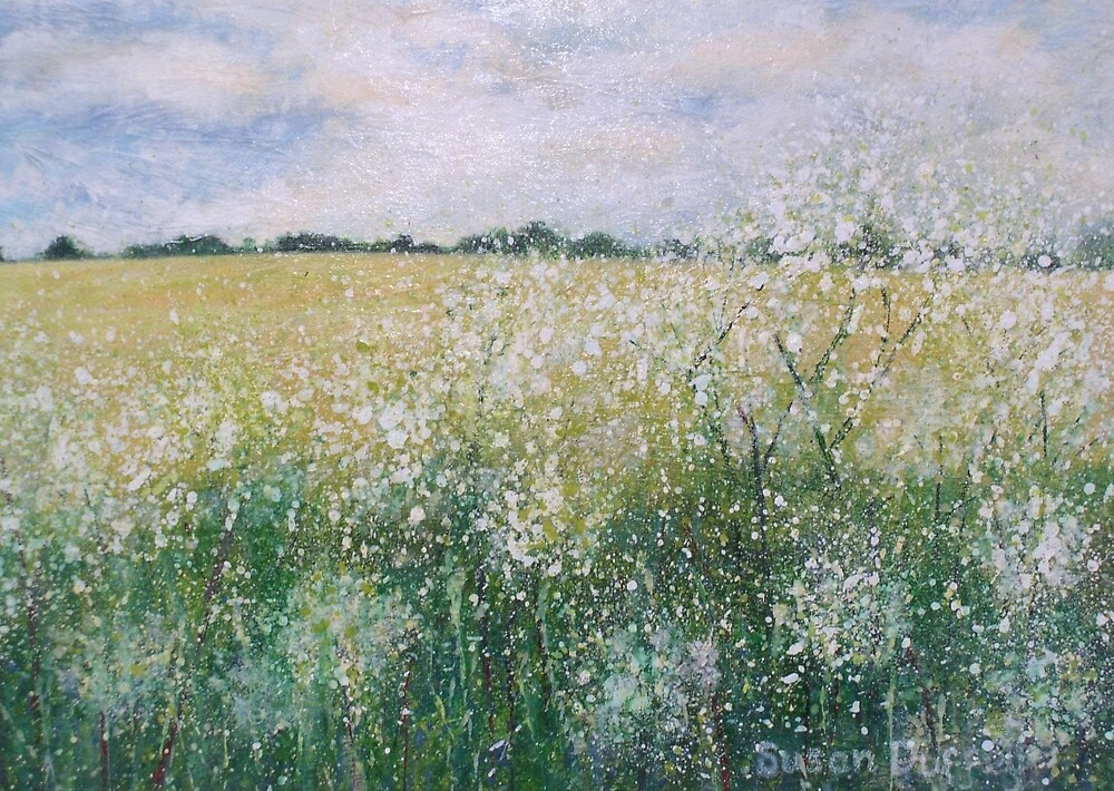 Cow Parsley by Susan Scott