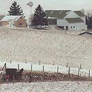 Amish Farm by Karl R. Martin