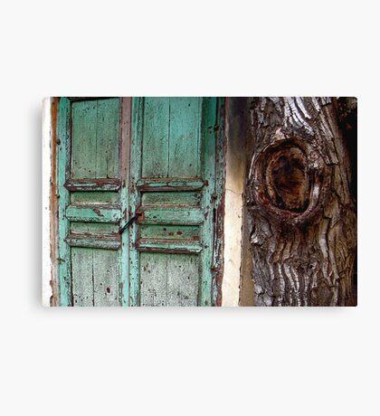 Door and trunk, Atlas mountains Canvas Print