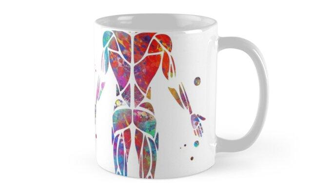 Muskelsystem, Aquarellanatomiekunst, menschliche Muskeln ...
