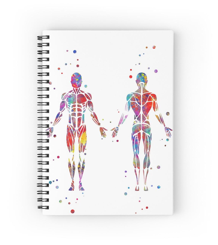 Cuadernos de espiral «Sistema muscular, arte de la anatomía de la ...
