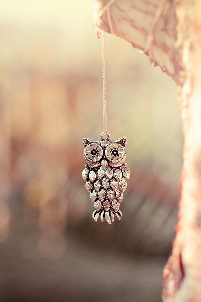 Owl Spirit by Trish Mistric