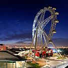 melbourne's Southern Star  by snappytwo