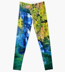 Upper Whitewater Falls North Carolina Leggings