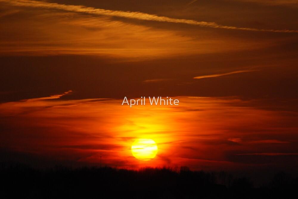 Sky of Orange by April White