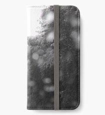 Snow iPhone Wallet/Case/Skin