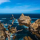 Big Sur Point Lobos Looking North by photosbyflood