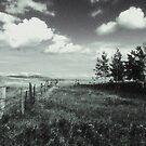 Prairie Landscape by ionclad