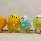 Chicks in a Row by Diana Forgione