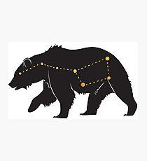 Ursa Major Bear Gold Photographic Print