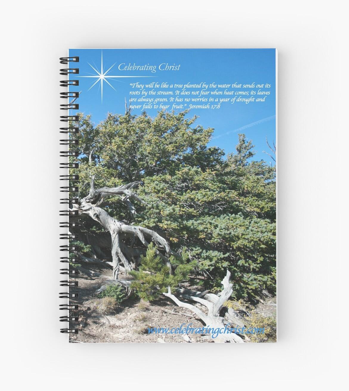 Celebrating Christ Bristlecone Pine by SHERYL DAWSON