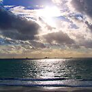 Sea Liner`s by Daniel Rayfield