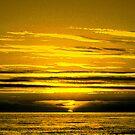 Golden Sunset by ienemien