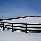 A Curved Fence in Winter by Larry Llewellyn