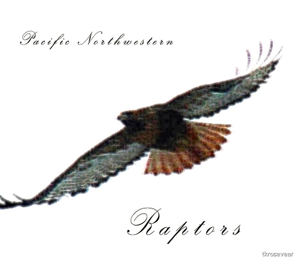 Pacific Northwestern Raptors by tkrosevear
