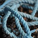 Blue coiled snake by TheKoopaBros