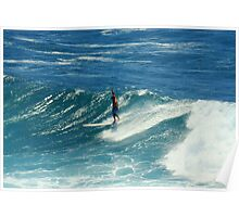 Surfing at Fairy Bower, Manly, NSW, Australia  Poster