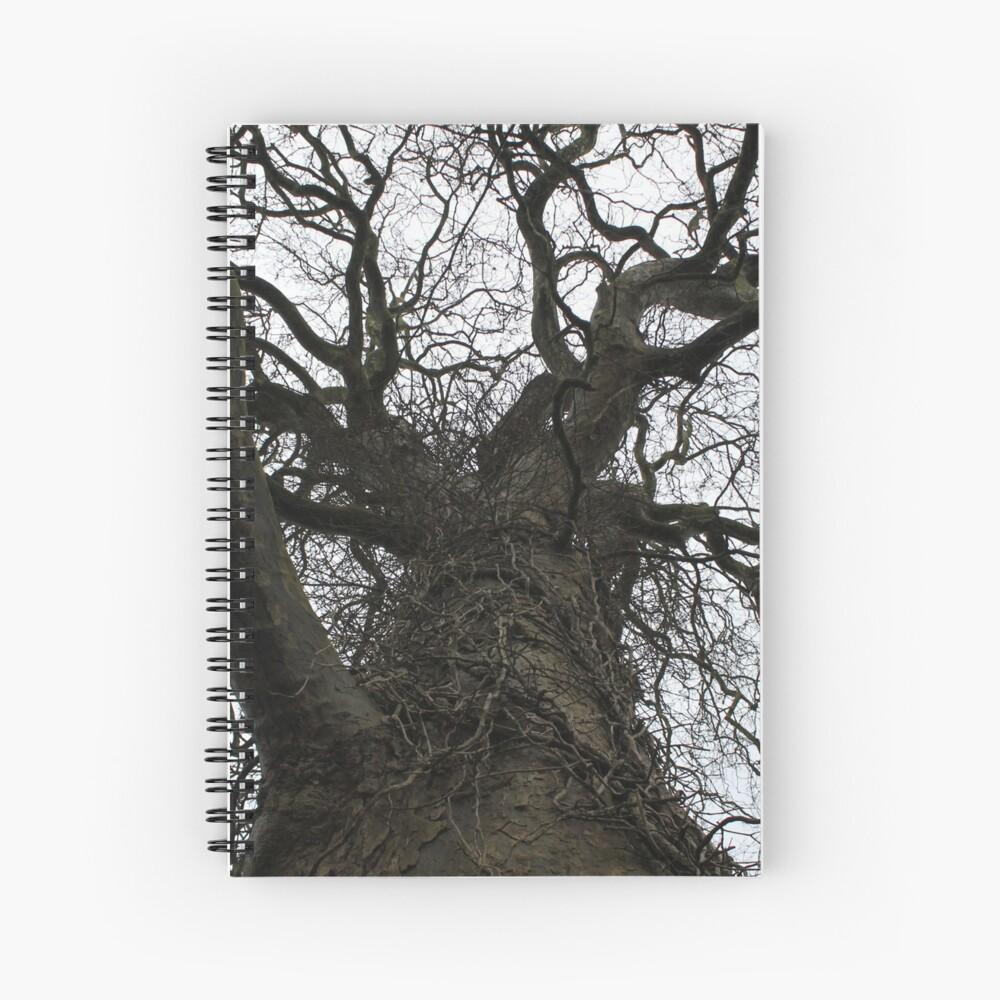 nice tree Spiral Notebook