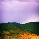 Italian Alps in Fall by Silvia Ganora
