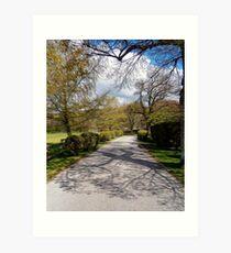 path to heaven Art Print