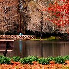 Orangeburg Memorial Gardens I by Ellen  Price - Greenwald