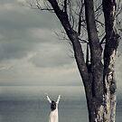 Cherish the day  by Joana Kruse