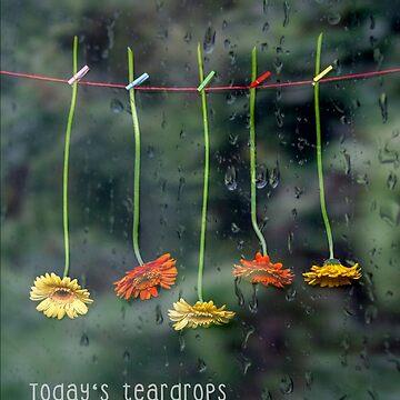 Teardrops by JoanaKruse