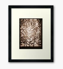 untitled~1 Framed Print
