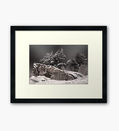 Trees Onstage Framed Print