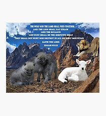 THE WOLF AND THE LAMB SHALL FEED TOGETHER ..ISAIAH 65:25..BIBLICAL PICTURE WITH SCRIPTURE AND OR CARD ECT.. Photographic Print