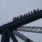 Harbour Bridge Climb by Coloursofnature