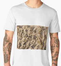 golden wheat field agriculture background  Men's Premium T-Shirt