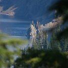 Phantom Ship, Crater Lake National Park by Laddie Halupa
