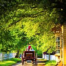 Woodland Ride - Colonial Williamsburg by Mark Tisdale