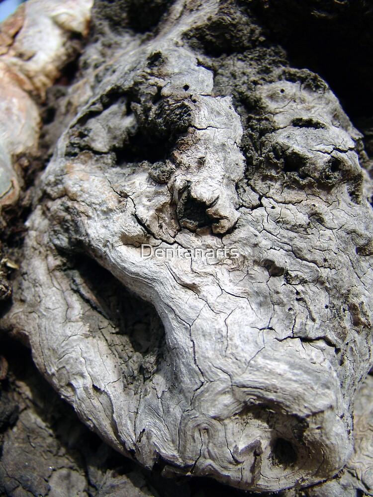 Artificial Face - Tree Bark by Dentanarts