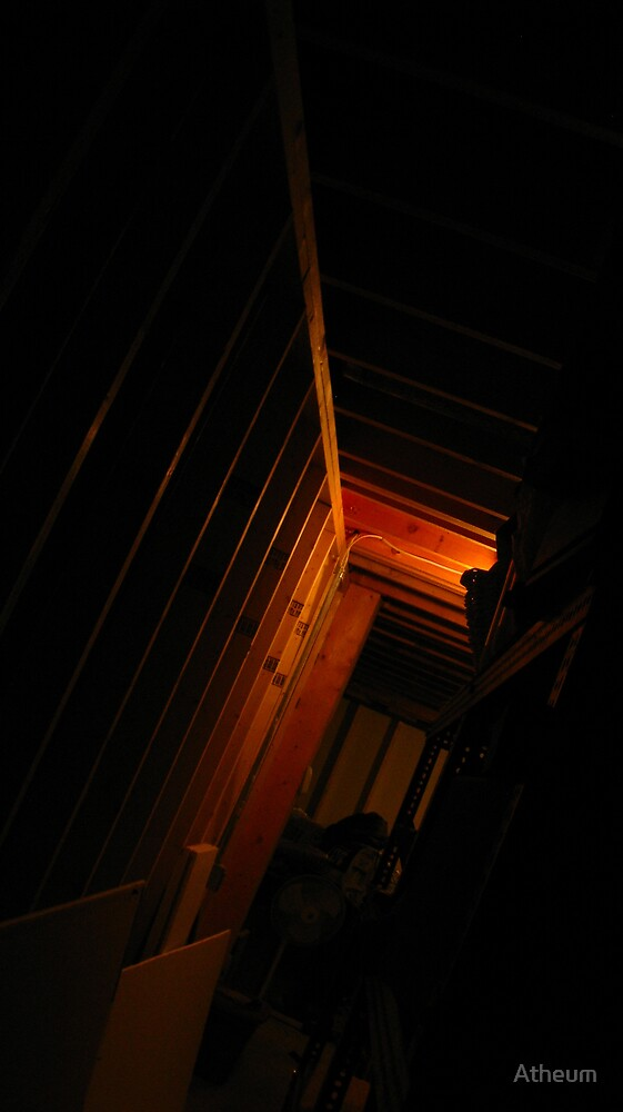 The Ribs of the Cage by Atheum