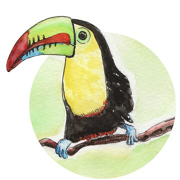 Toucan watercolor by nobelbunt