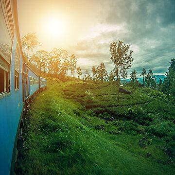 Train Sri Lanka by Isch