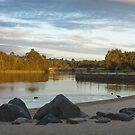 Lake Beach by Joel McDonald