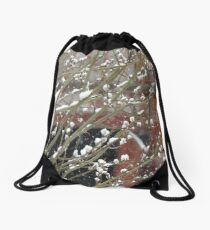 Pussy Willow in the Snow Behind the Old Red Barn Drawstring Bag