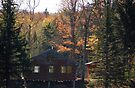 A Cabin in the Green Mtns of Vermont by John Schneider
