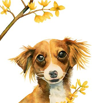 Signs of Spring | Cute Dog with Forsythia Watercolor Painting by namibear