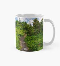 beautiful mountain landscape with grassy hills Mug