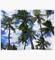 Palm Tress in Fiji Poster
