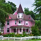 Pink Lady by Nadya Johnson