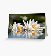 Сlose-up beauty Greeting Card