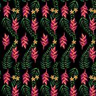 «Paraíso Topical» de pitaya-roja