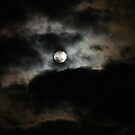 Moon Beauty by artgoddess